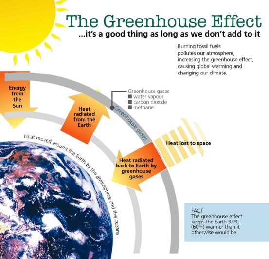 greenhouse effect essay