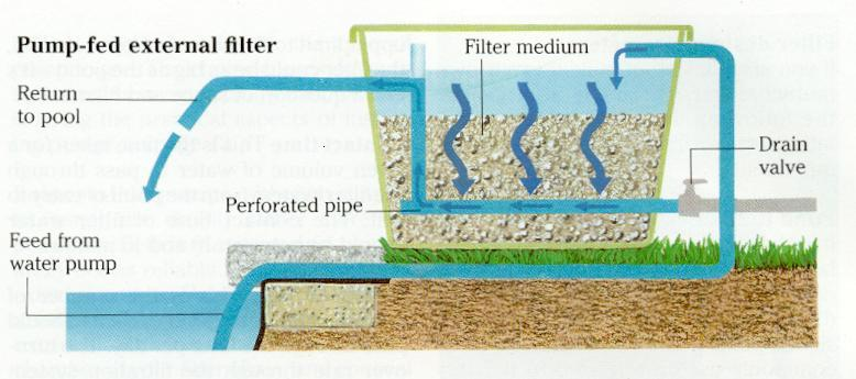 for Best koi pond filter design