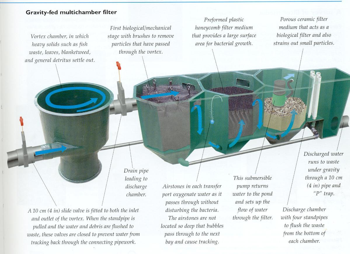 Homemade fish pond water filters homemade ftempo for Pond filter cleaning maintenance