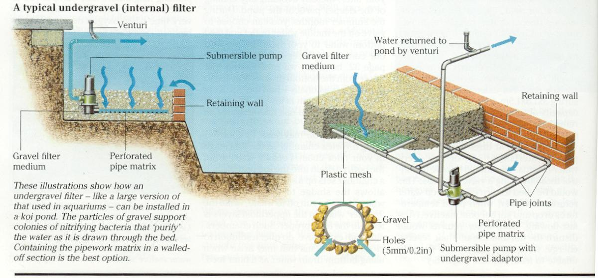 Undergravel filtration systems use gravel beds good or bad for Koi pond filter system design