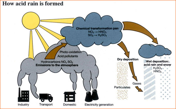 the causes and effects of acid rain an environmental problem Sources and environmental impacts of acid rain and acid deposition  the primary causes of acid rain  report a problem find a form.