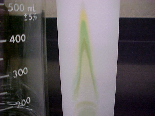 chromatography of photosynthetic pigments Pigments are chemical compounds which reflect only certain wavelengths of visible light this makes them appear colorful in plants, algae, and cyanobacteria, pigments are the means by which the energy of sunlight is captured for photosynthesis.